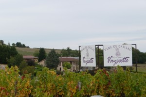 A vineyard in the Gaillac wine region of France with a sign showing the name of the vineyard Vins de Gaillac - Domaine Vaysette