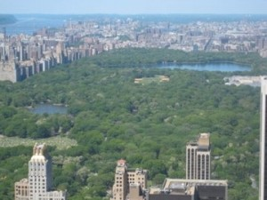 View of Central Park from Rockafella Centre in New York