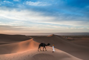 Arab leading a camel in the Sahara Desert in the day time